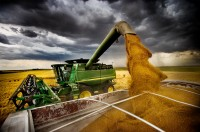 Fears for the harvest of Russian grain in 2021 already exist today - expert